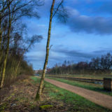exploring the bridgewater canal salford